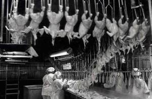 Workers in meatpacking and poultry processing plants need work-speed regulations to prevent crippling injuries on the job.