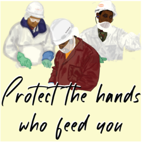 Protect the hands who feed you